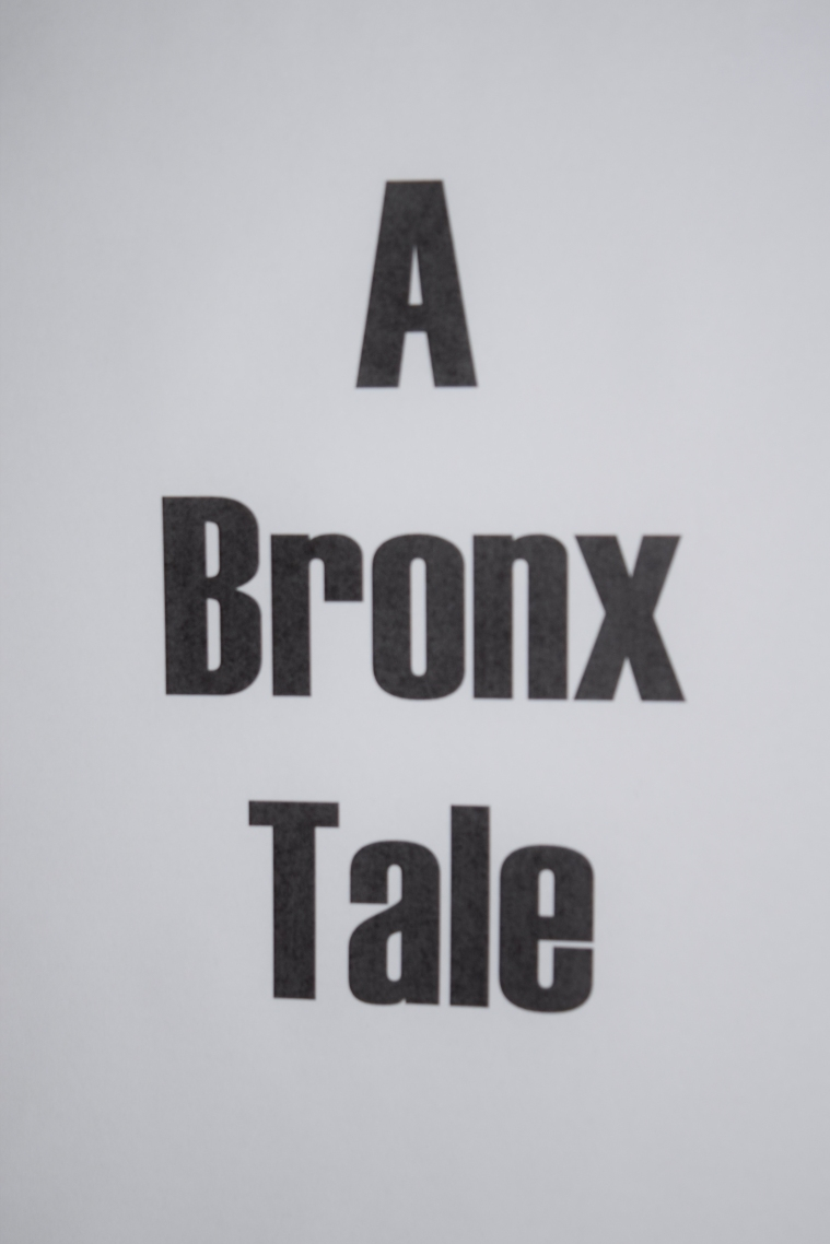 Bronx Intro Page